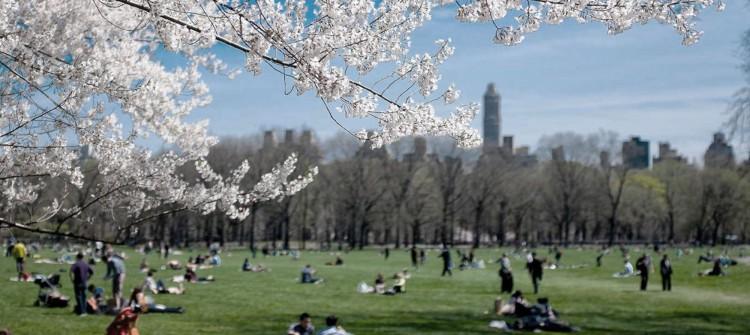 Si queremos ciudades sostenibles necesitamos tener ciudadanos responsables